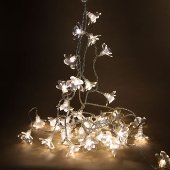 Moon Flower Fairy Lights