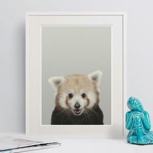 Red Panda Peekaboo Animal Print