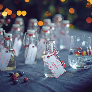 12 Gins Of Christmas - gift sets