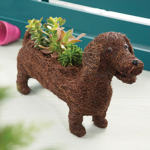 Dachshund Planter - mum loves