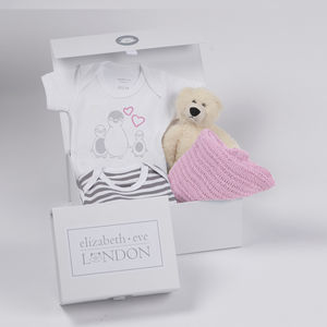 Baby Girl Teddy Bundle Gift Box Six 12 Months