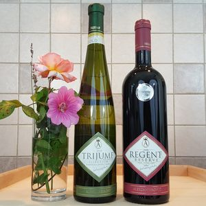 Podrum Aleksandrovic Trijumf And Regent Wine Twin Pack