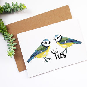'Nice Tits' Funny Anniversary Card - wedding, engagement & anniversary cards