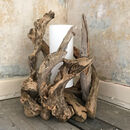 Lagoon Driftwood Lamp With Shade