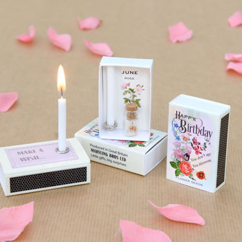 June Birth Flower Seeds In A Matchbox