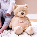 Personalised Teddy Bear Childrens Soft Toy
