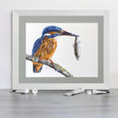Female Kingfisher Mounted Signed Giclée Print