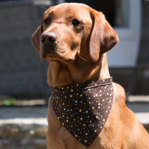 Star Print Neckerchief For Dogs