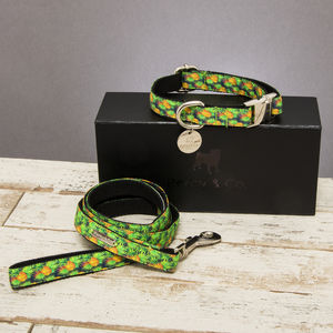 The Alderley Pineapple Dog Collar And Lead Set - dogs