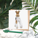 'Fergus Fox Terrier' Greeting Card