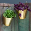 Galvanised Gold Wall Hung Plant Pot