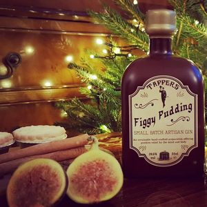 Figgy Pudding Christmas Gin - our top new picks