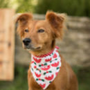 Christmas Neckerchief For Dogs