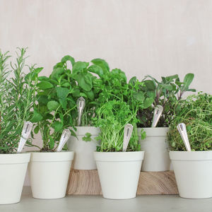 Set Of Six Personalised Vintage Herb Markers - kitchen