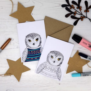 Colour Me In Jumper Snowy Owl Card