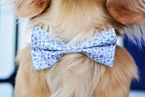 Liberty Print Bow Tie - dogs