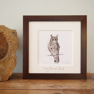 Long Eared Owl, Limited Edition Print - limited edition art
