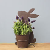 Curious Rabbit Planter - easter