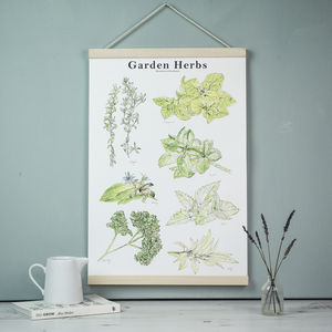 Illustrated Watercolour Garden Herb Botanical Art Print