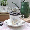 Hand Decorated Teacup Planter