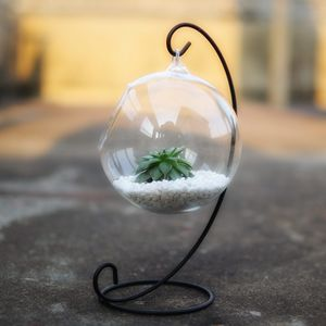 Hanging Glass Bauble Terrarium With Metal Holder