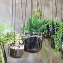 Silver Or Emerald Glass Hanging Planters