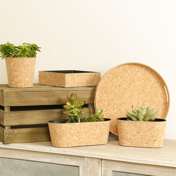Liège Récupéré Cork Planter And Storage Selection