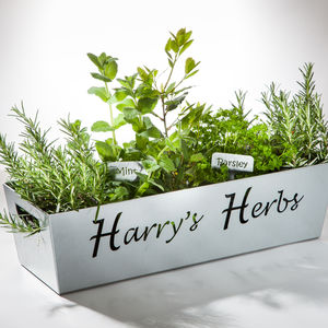 Personalised Herb Steel Planter - personalised