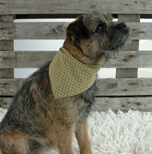 Rokabone Follow Your Arrow Dog Bandana - clothes & accessories
