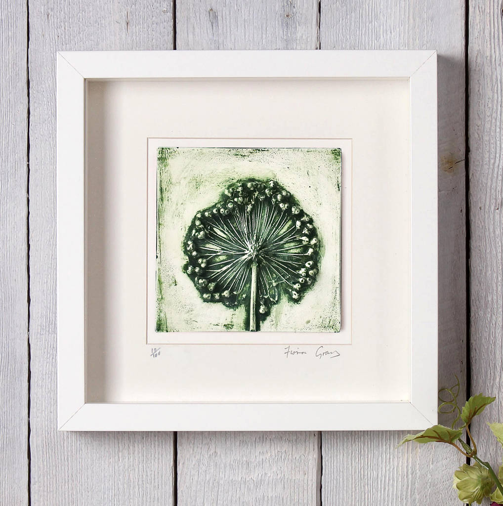 small allium seed head, plaster cast framed art by fiona gray ...