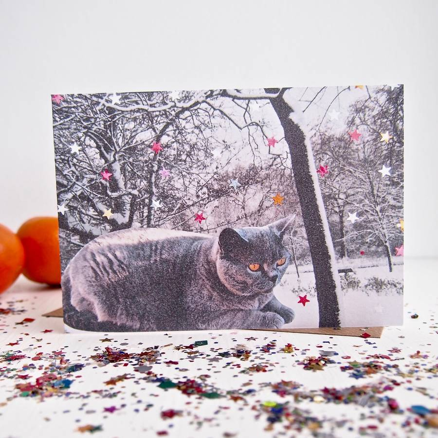 british blue shorthair cat lover christmas card by kabinshop ...