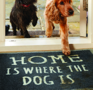 Howler And Scratch Patterned Mats - rugs & doormats