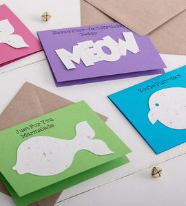 Catnip Confetti Card For Cats And Cat Lovers - cats