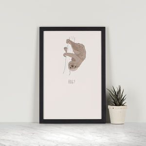Hug – Two Toed Sloth - drawings & illustrations