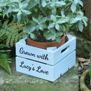 Personalised Mini Wooden Planter Gardening Gift