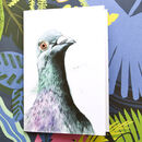 Inky Pigeon Notebook