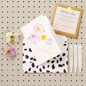 Candytuft Greetings Card With Wildflower Seeds - wedding favours