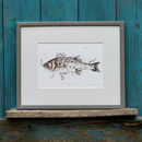Fish Limited Edition Print Sea Bass