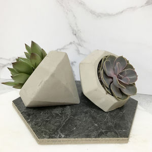 Concrete 'Diamond' Succulent Thank You Gift - flowers, plants & vases