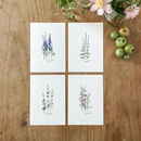 Set Of Cottage Garden Flower Botanical A5 Giclée Prints