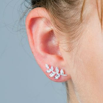 Fern Leaf Stud Silver Earrings