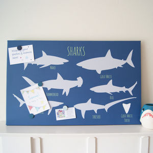 Shark Magnetic Noticeboard - noticeboards