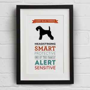 Kerry Blue Terrier Dog Breed Traits Print - what's new