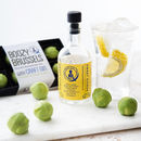 Craft Gin And Chocolate Sprouts Christmas Gift Set