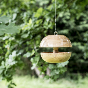 Monteray Cypress 'Applecore' Birdfeeder