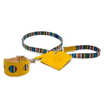 Kikoy Stripe Hound Collar And Lead Set