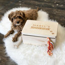 Personalised Dog Keepsake Box