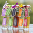 Summer Collection Set Of Five Vodkas