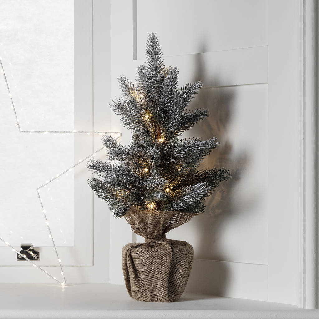 aspen pre lit mini frosted artificial christmas tree by ...