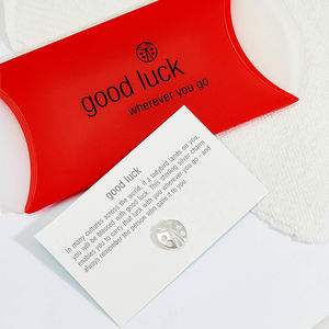 Silver Good Luck Keepsake Gift - pins & brooches